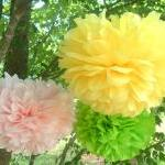 Set Of 10 Tissue Paper Pom..